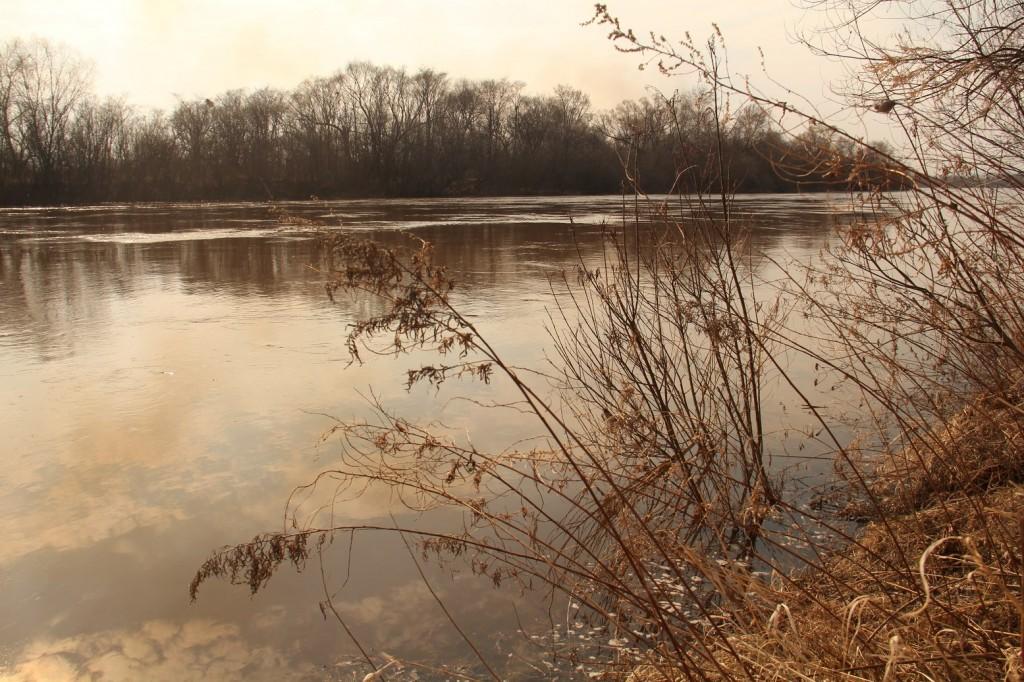 La rivière Bikin