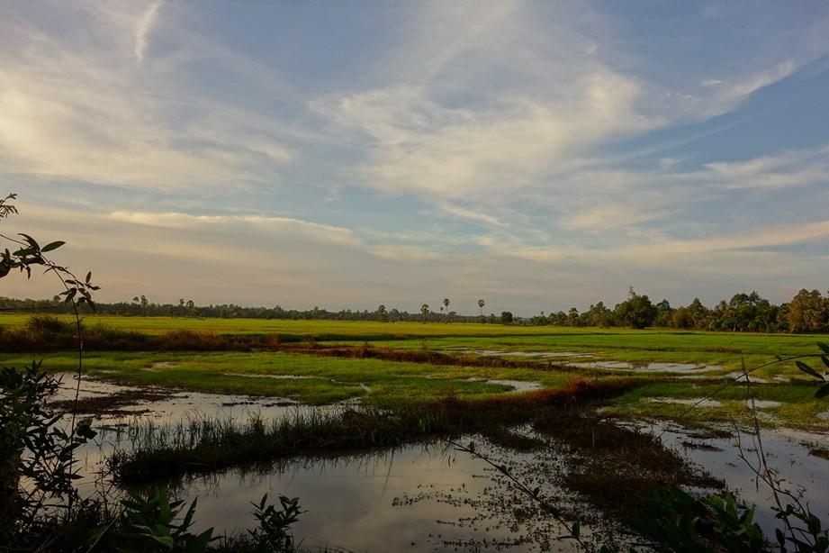 Rouler le long des rizières en fin de journée, quoi de mieux?