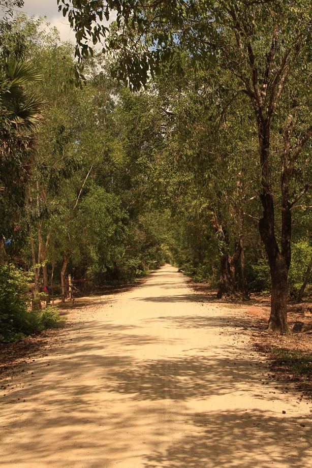 La route passe aussi par des petites pistes. Celles-ci me font gagner quelques kilomètres