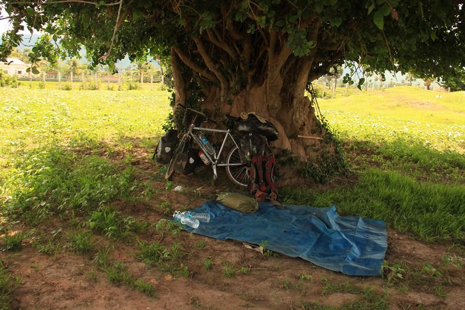 Au près de mon arbres, je siestais heureux...