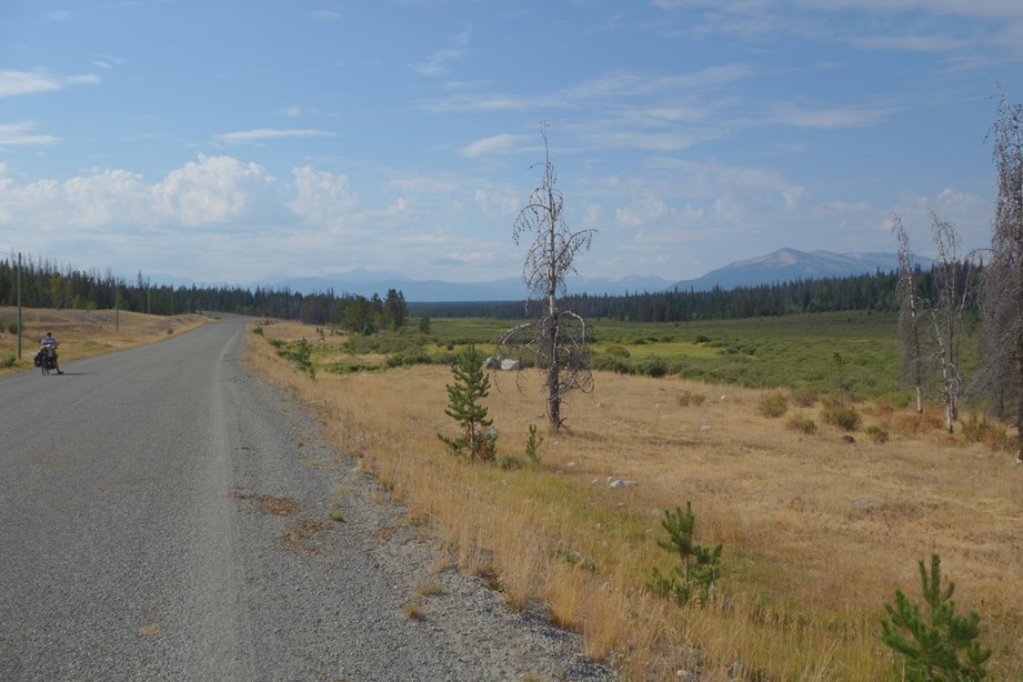 Le plateau avec ces plaines, ses montagnes au loin et ses vieux arbres brulés. Photo © Maxime