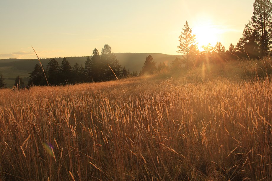 --- et coucher de soleil