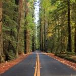 California State, en Route pour San Francisco