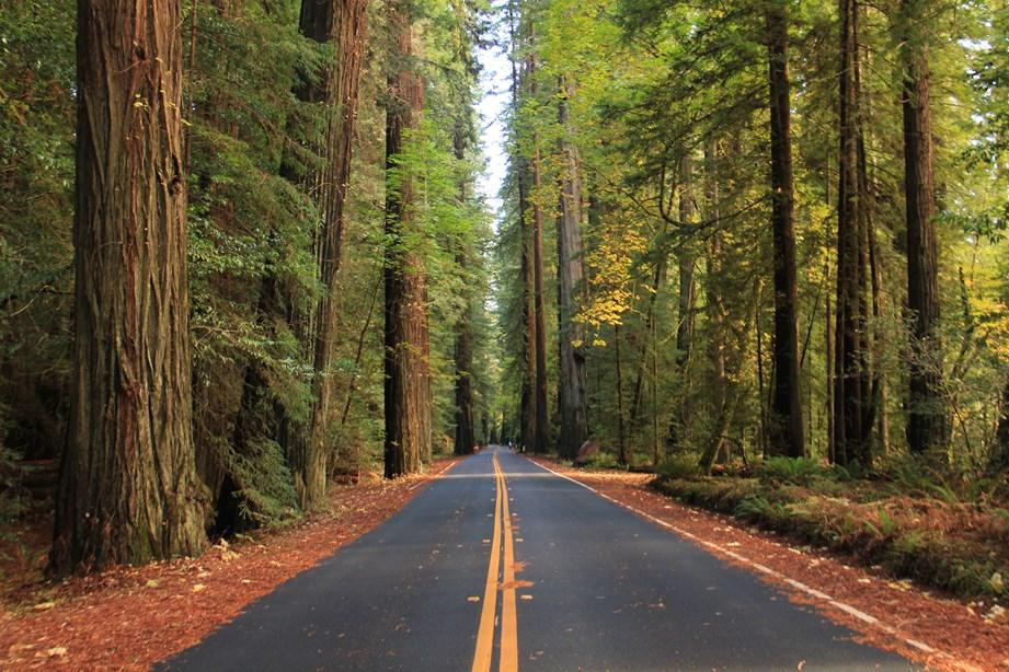 Belle route où je me sens minuscule