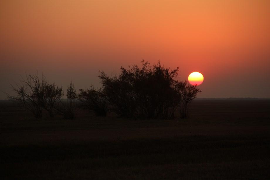 première nuit dans le désert