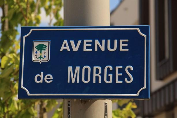 ... et je me rappelle que c'est la ville qui est jumelé avec Morges. Et que j'ai même commencé et que je finirai mon voyage au Parc du Vertou!