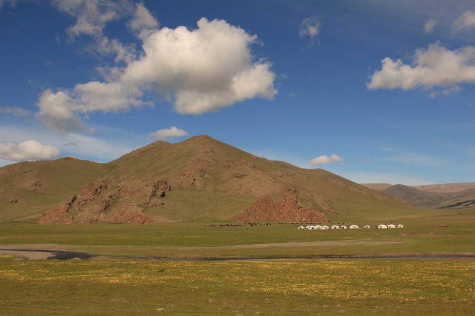 Mongolie: La Steppe
