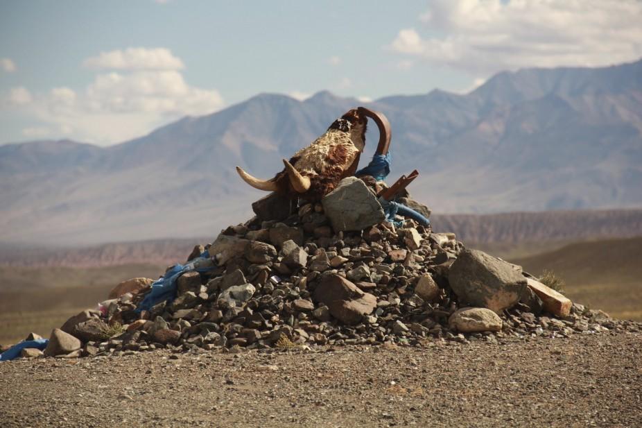 Mongolie: Le Gobi d'en-haut